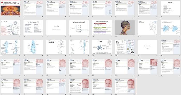 Akupunktúrne body online kurz Žlčník