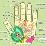 Su Jok - mikrosystém ruky a nohy